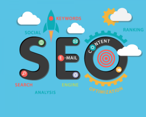 SEO service reviews