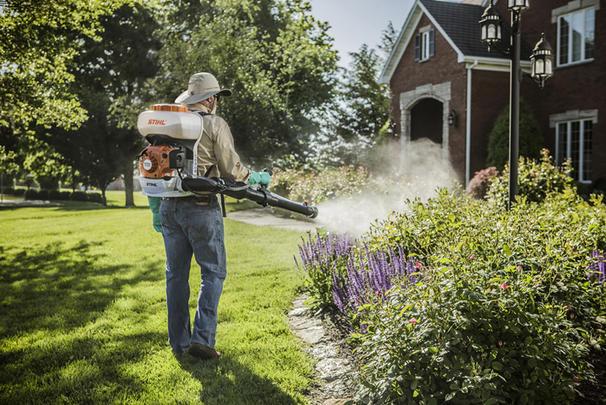 bed bug pesticide